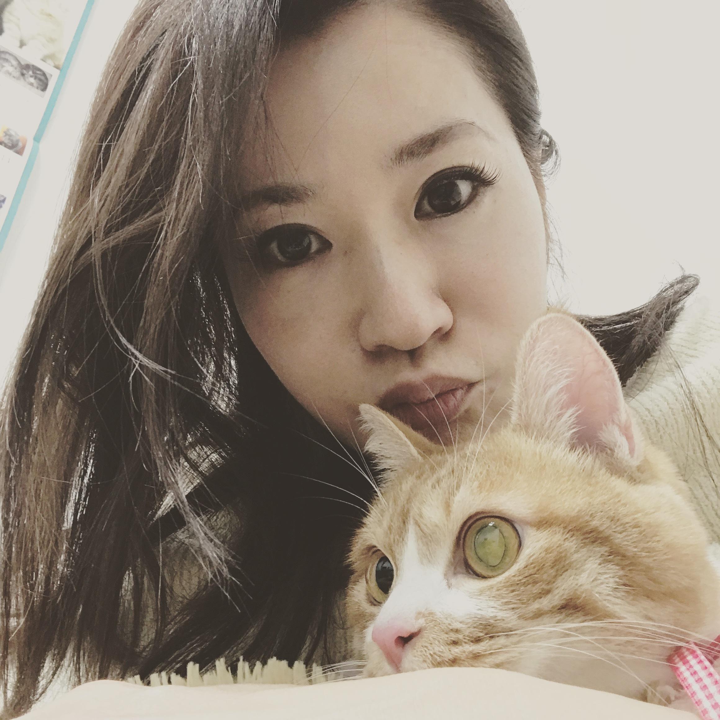 愛猫が膀胱炎に…_1_1