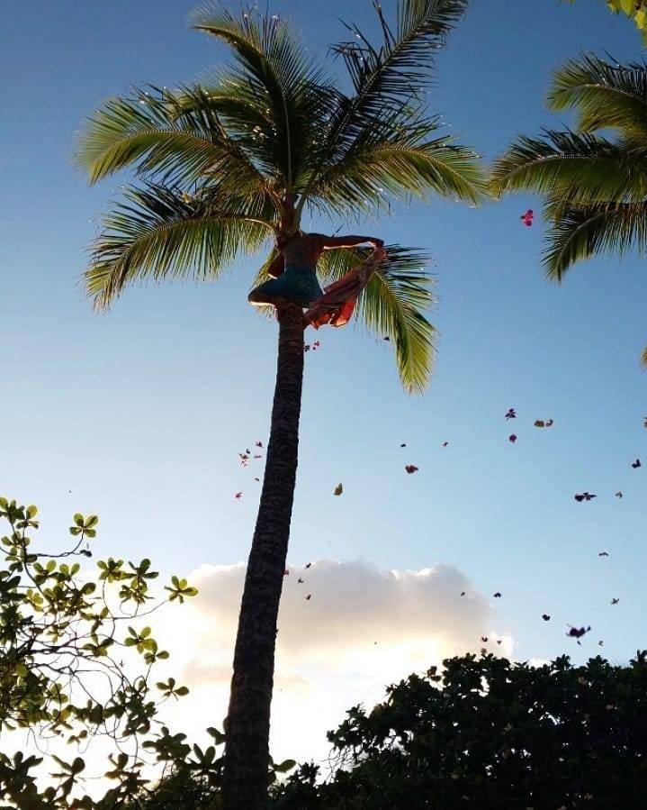 大人のハワイ旅_1_5-2