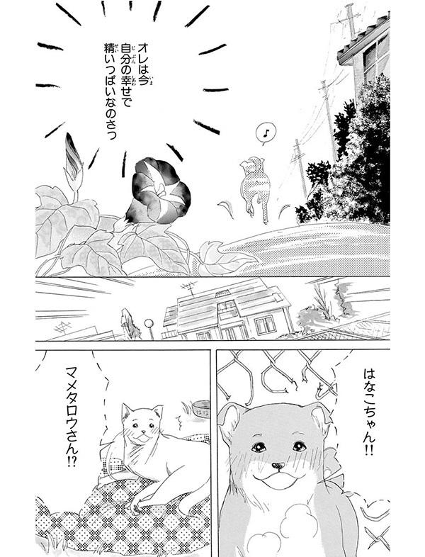 祝・戌年!わんこが主人公の「まっすぐにいこう。」で、きっと猫好きも癒される!【パクチー先輩の漫画日記 #3】_1_1-9