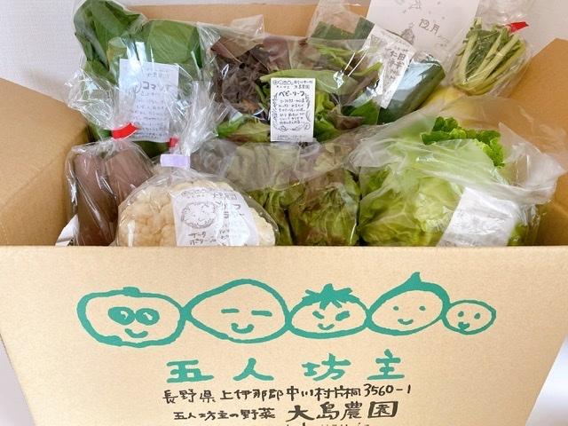 【お取り寄せ有機野菜】信州中川村の五人坊主に感動!_1_2