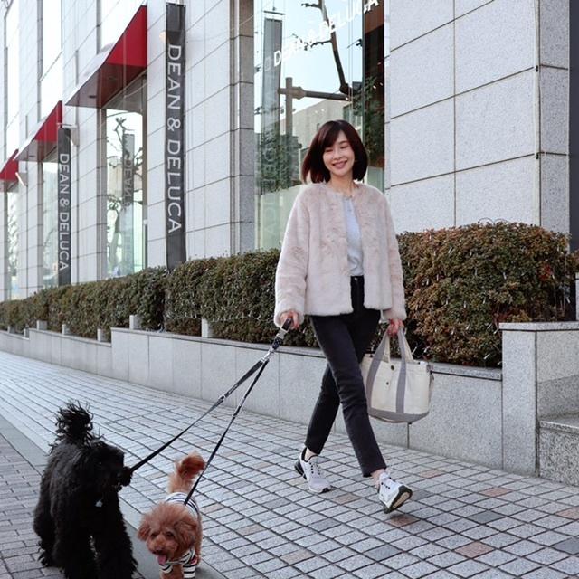 エコファー 犬 トイプードル お散歩