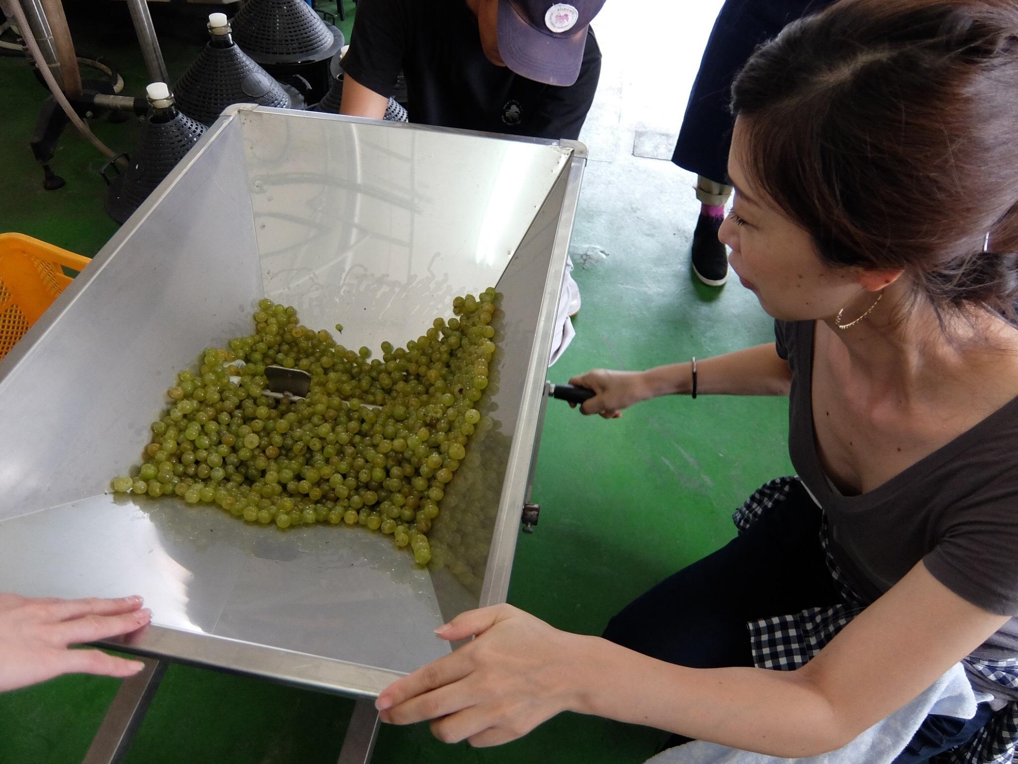 オリジナルワインを造る②_1_2-2