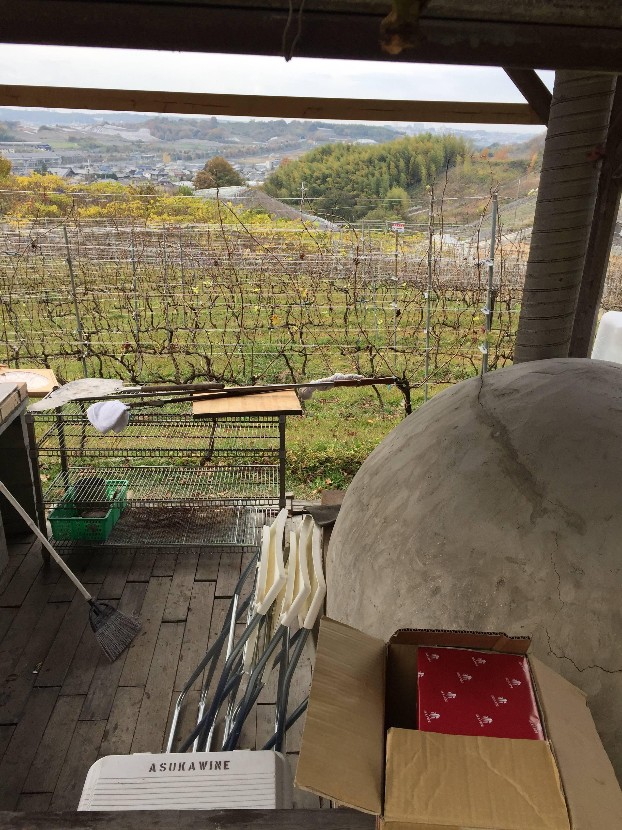 葡萄畑を眺めながら♡ワイナリーで冬BBQ!_1_4-1