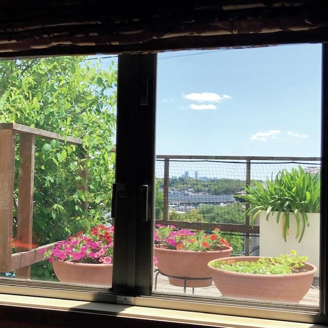 窓から見える高さに花やグリーンの鉢植えを