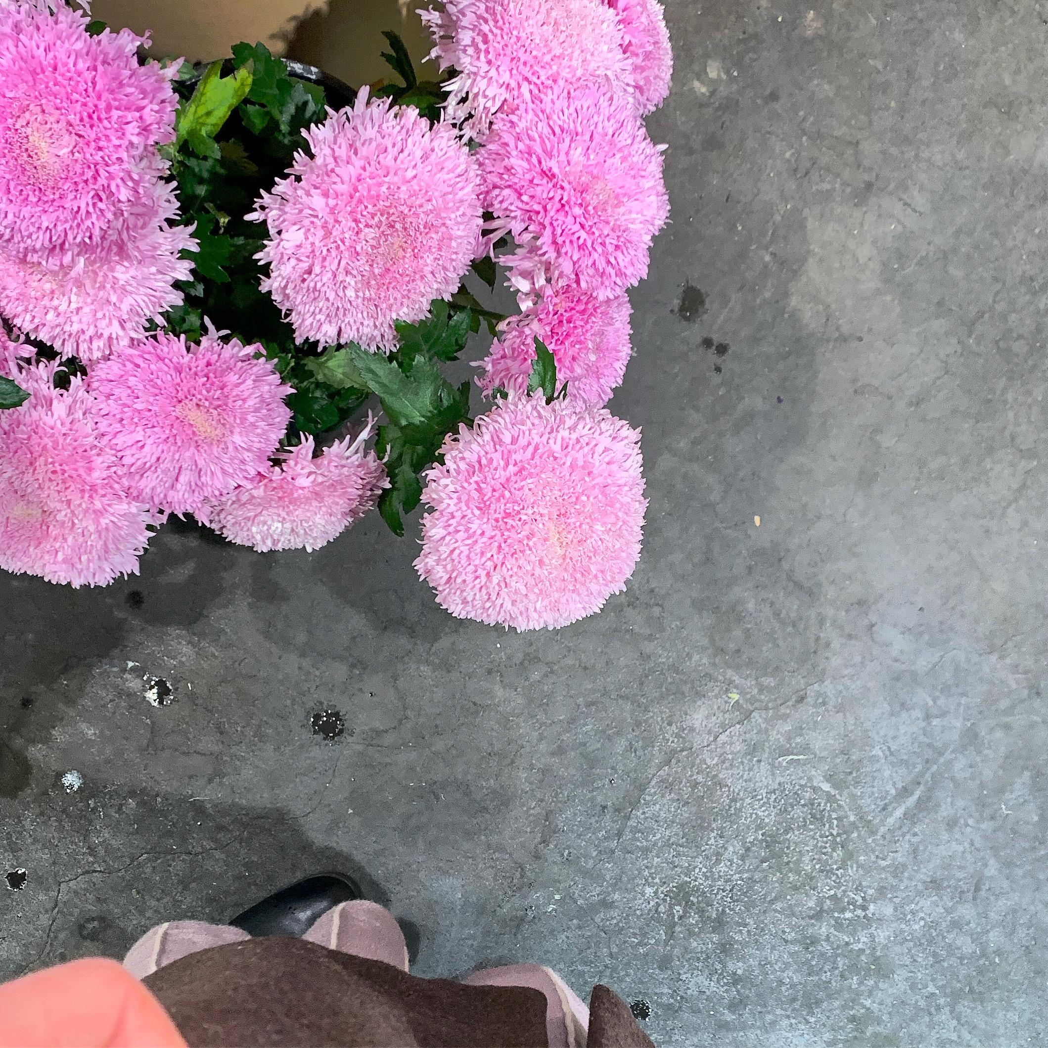 【スタバ】1/17〜バレンタインの新作を食レポ!!_1_6