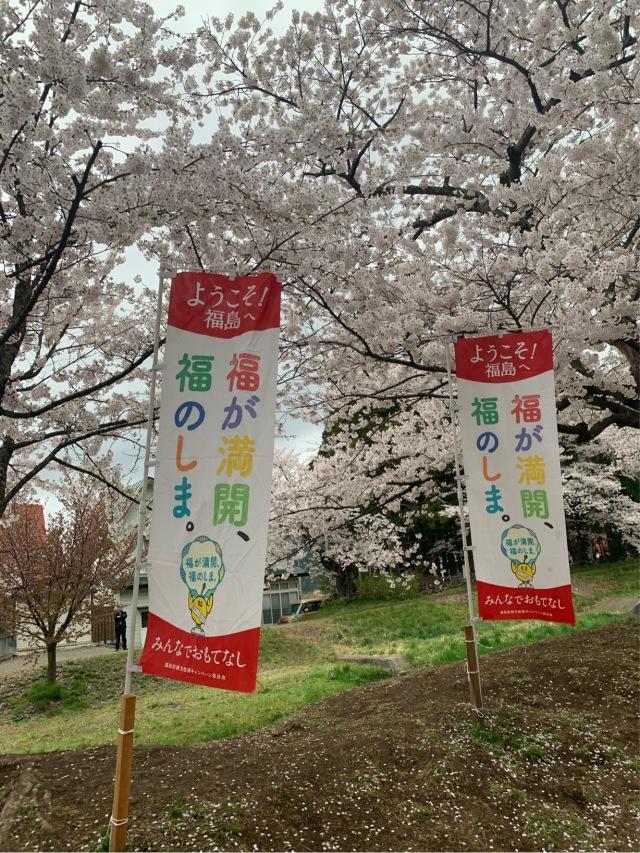 福島県でおすすめの『桜の名所』②_1_4-2