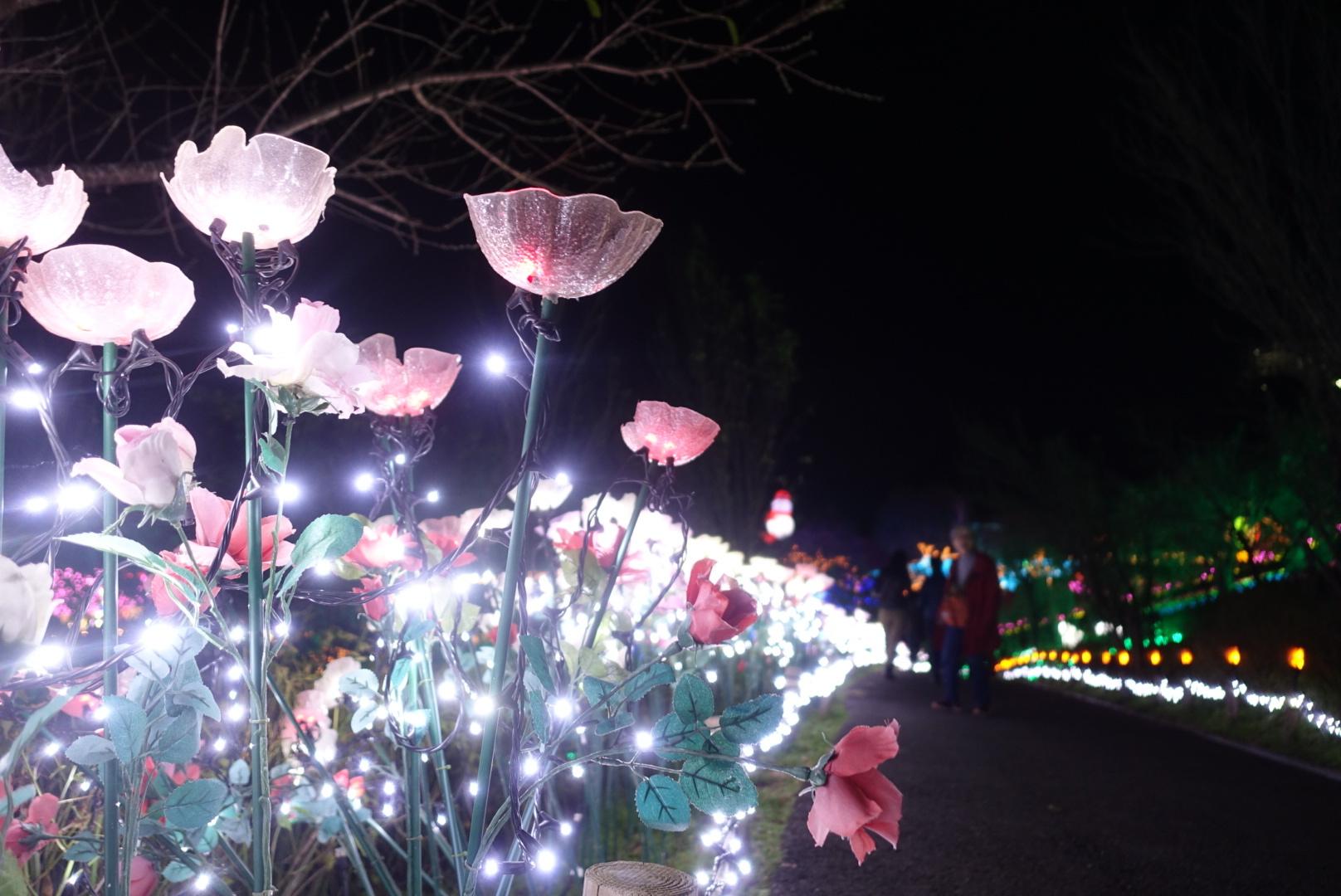 Vol.64♡ 関東最大級!600万級の光の祭典【さがみ湖イルミリオン】_1_4