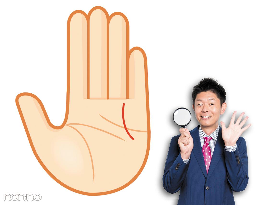 ビューティー線|島田秀平さんの最強手相占い!