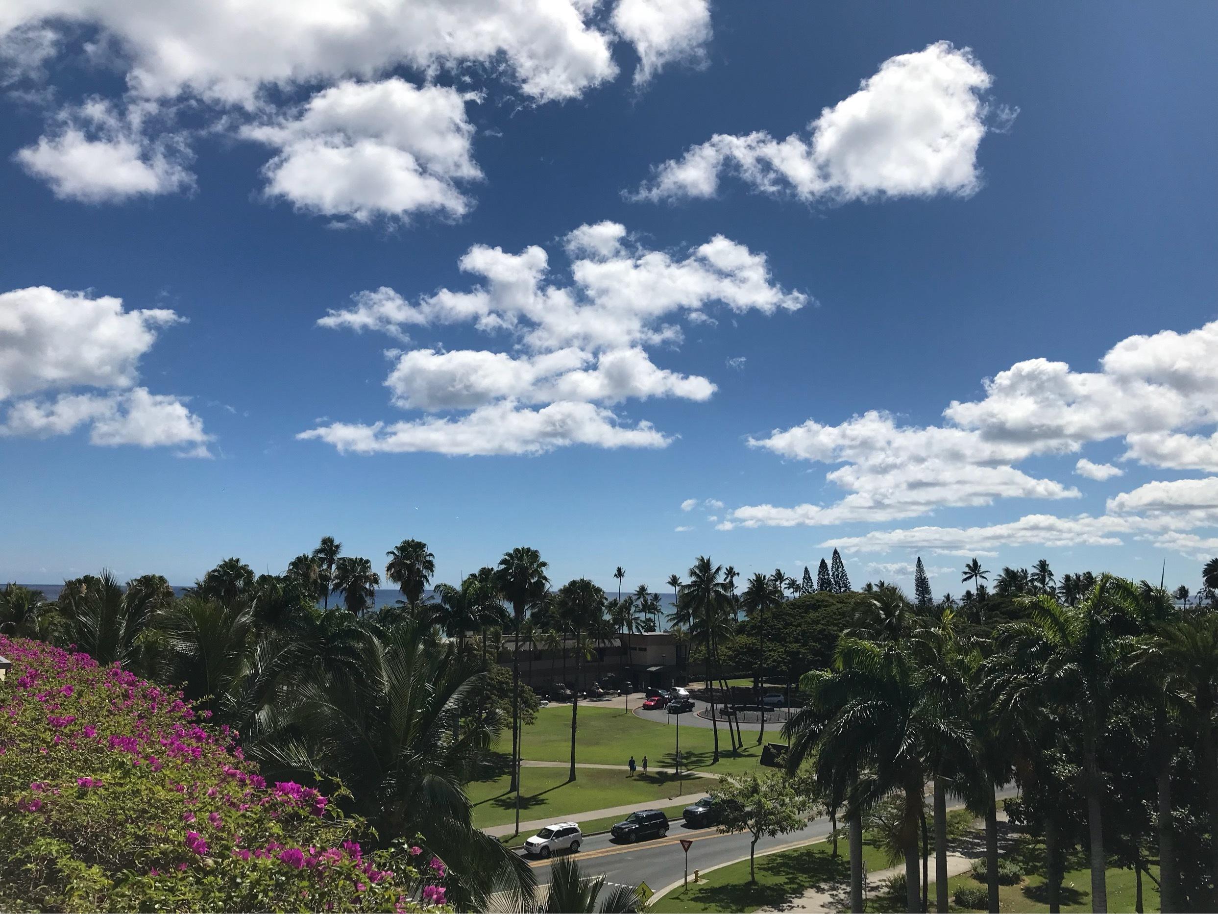 久しぶりにハワイへ♪_1_3-3