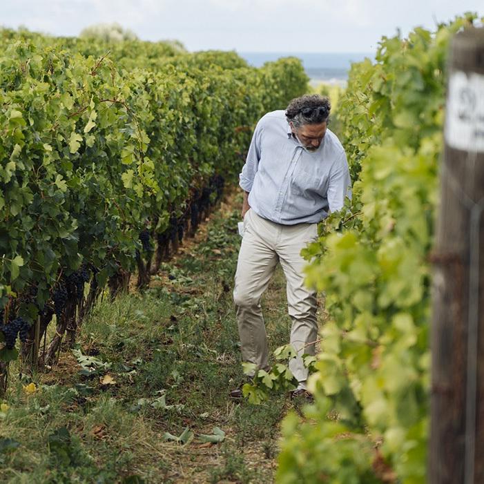 ワイン醸造家のアクセル・ハインツ氏