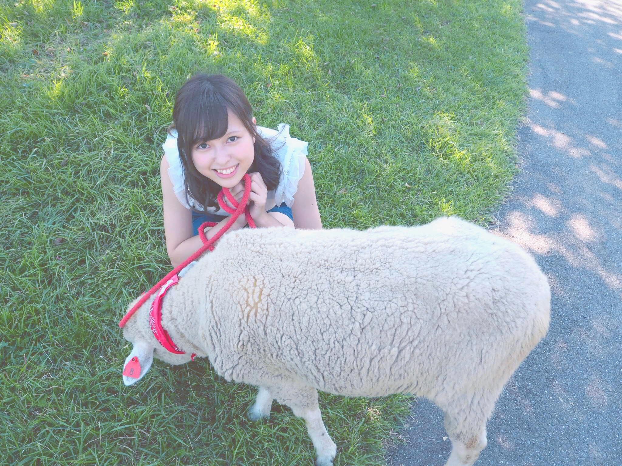 動物好きさん必見!夏は伊香保で羊とお散歩しちゃおう♩_1_2
