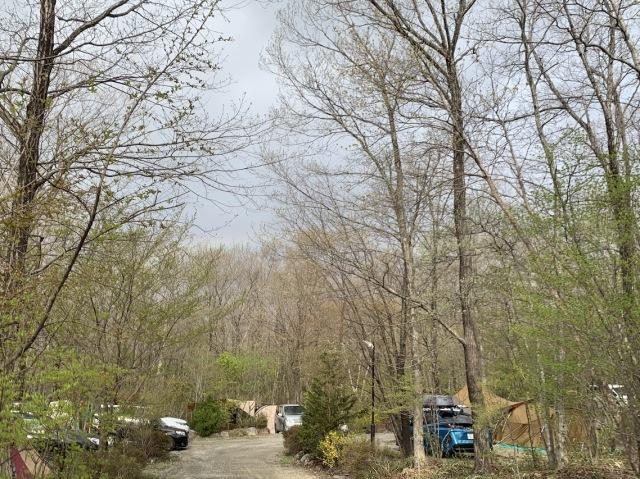 ゴールデンウィークは那須のキャンプ場へ_1_1-3