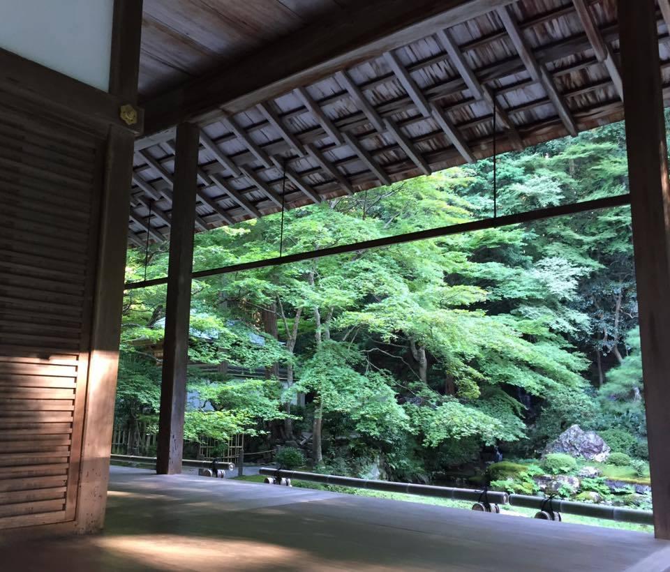 奈良、京都 _1_7