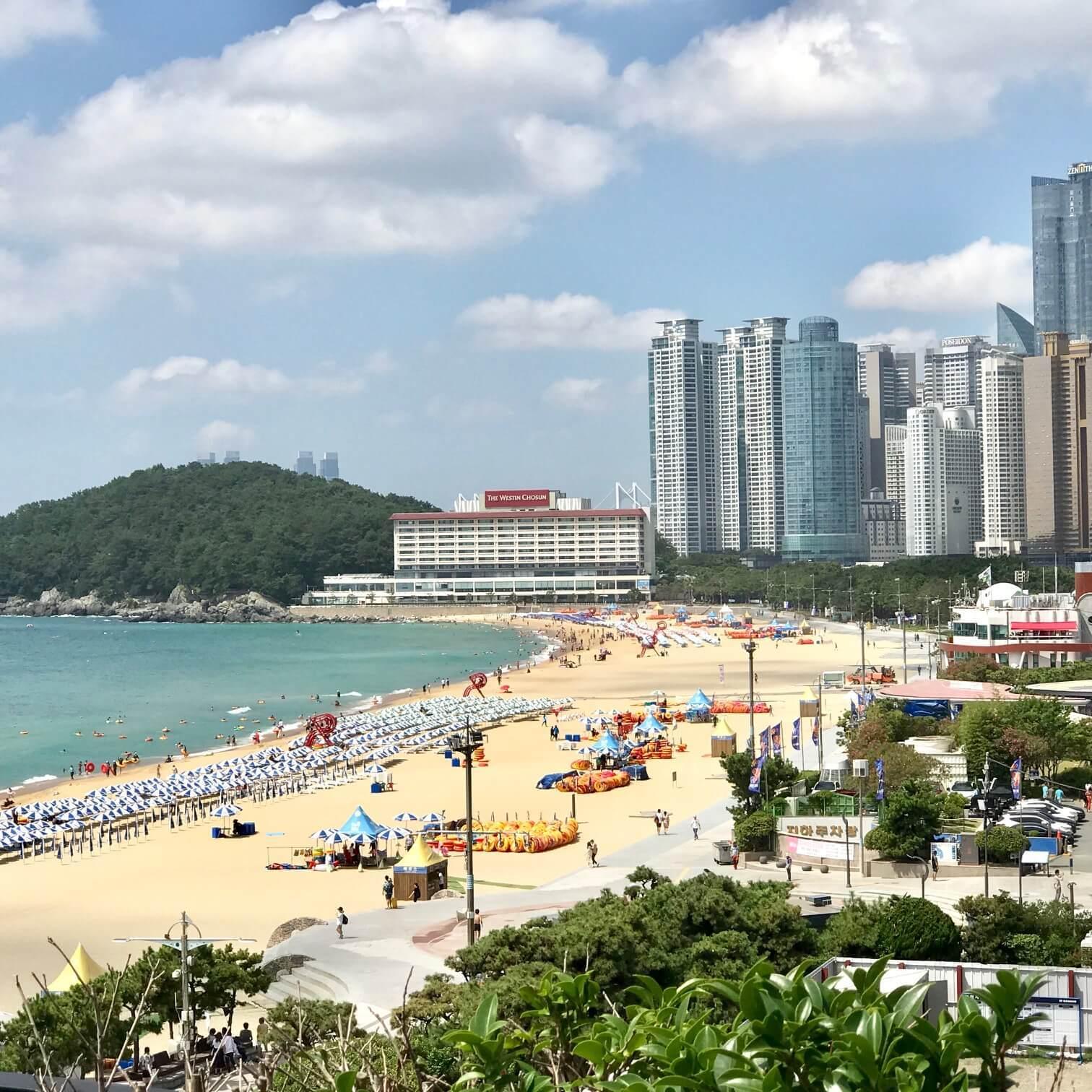 釜山のビーチ画像
