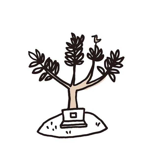 樹木を墓標としたリーズナブルなお墓