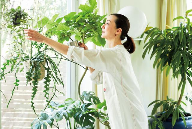 植物に触れ、手入れをしていると心が休まり、元気になれる