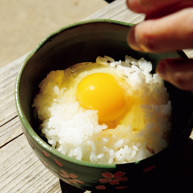 土佐ジローの卵かけごはん