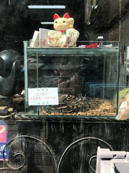 ヘビ料理専門店
