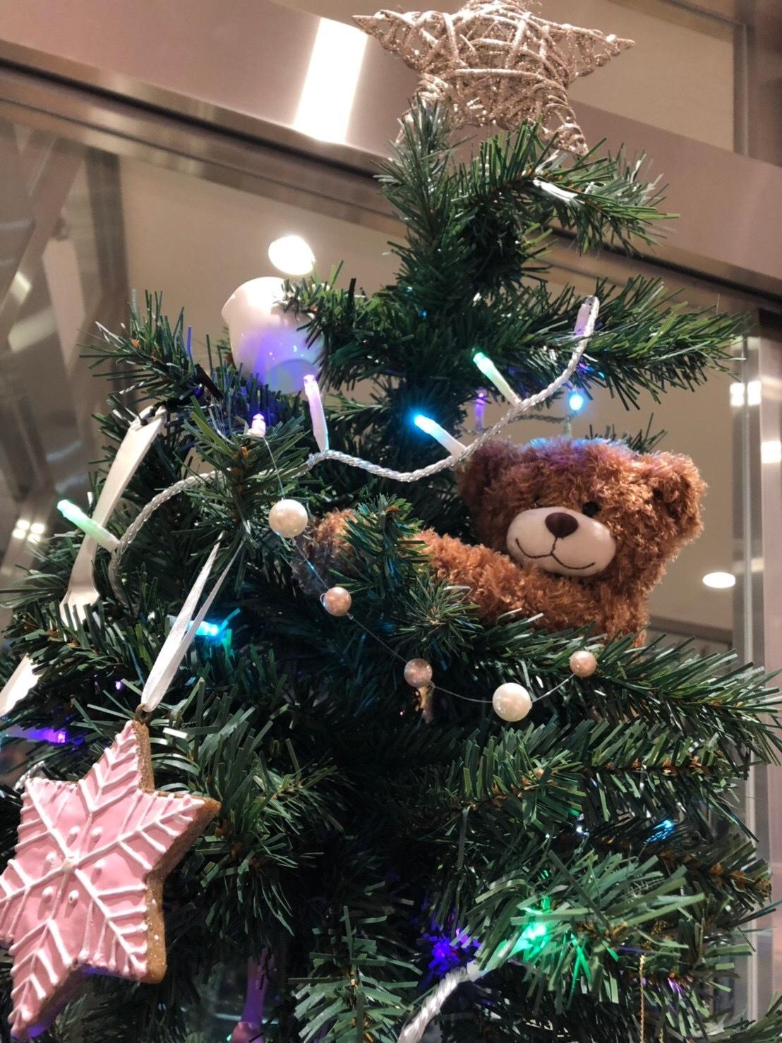 クリスマスツリーはニトリの製品で作ろう!_1_2-1