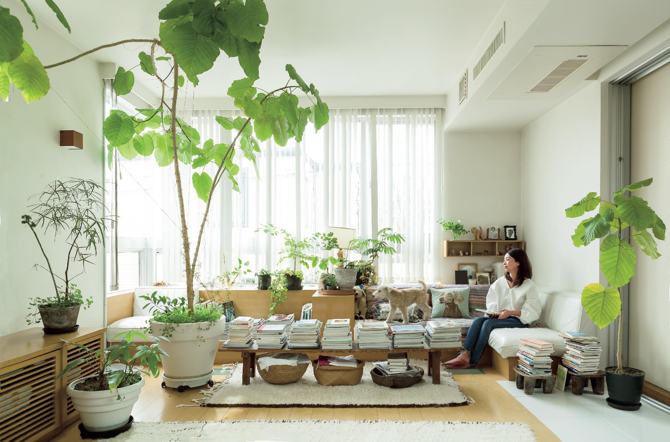 日々の生活を心地よく過ごすための室内グリーンの飾り方 五選_1_1