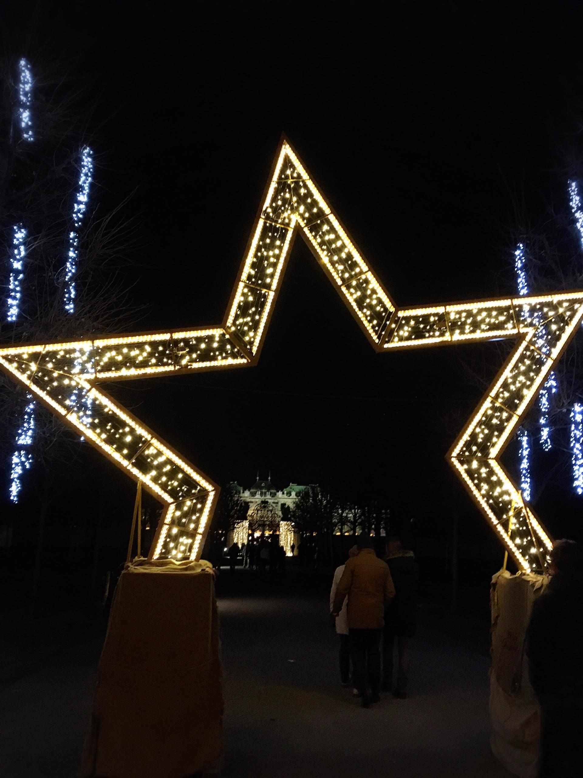 ベルベデーレ宮殿のクリスマス_1_2