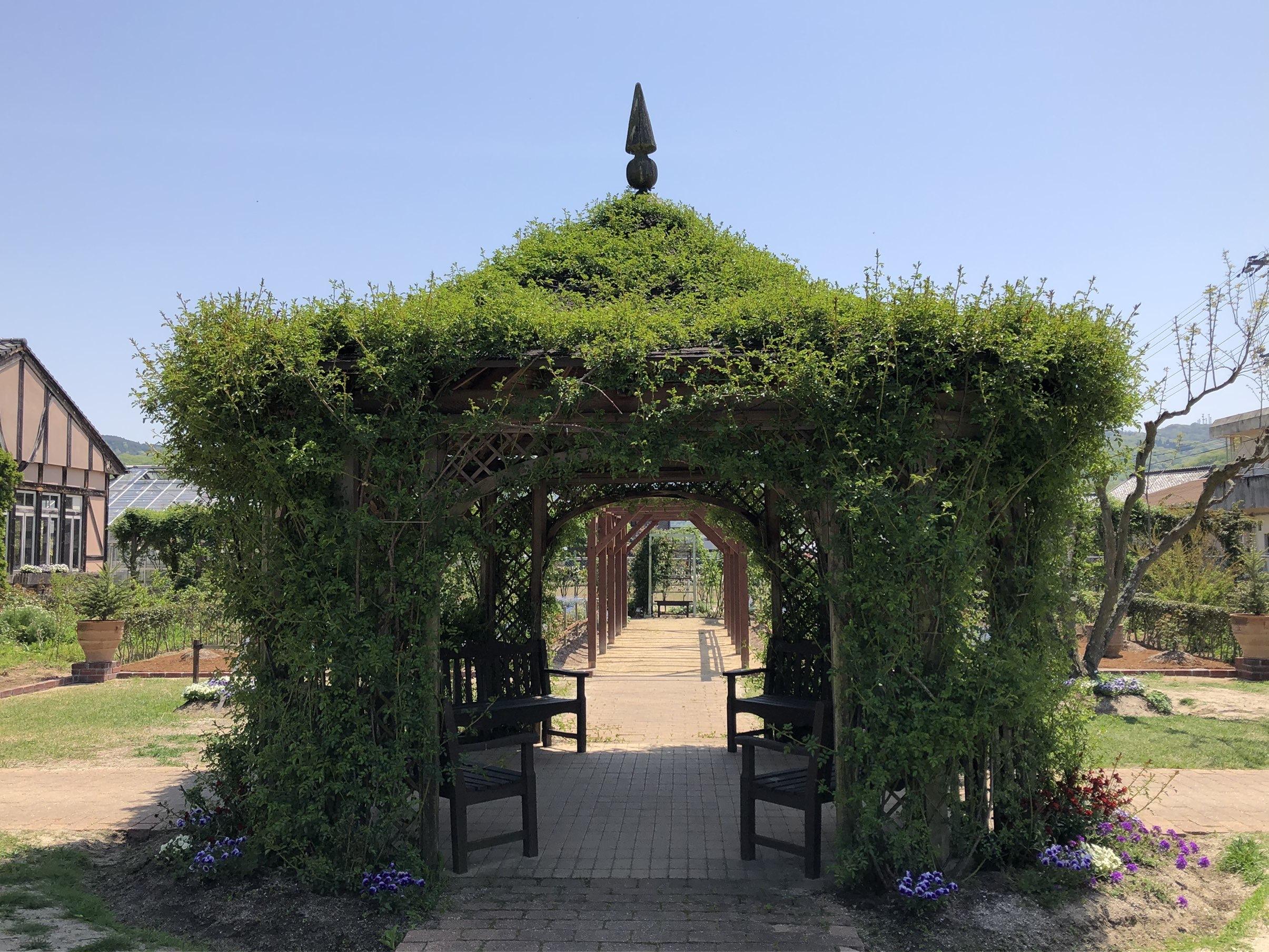 お気に入りトップスにGU白デニムで熊山英国庭園へ ~勿忘草~_1_6