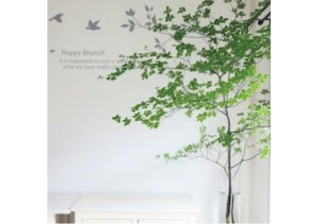 「植物×小鳥のステッカーでアトリエが心地いい空間に」
