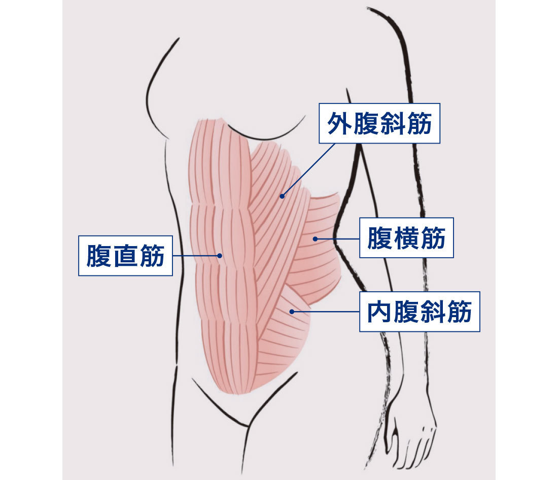左 痛い が を 脇腹 吸う と 息