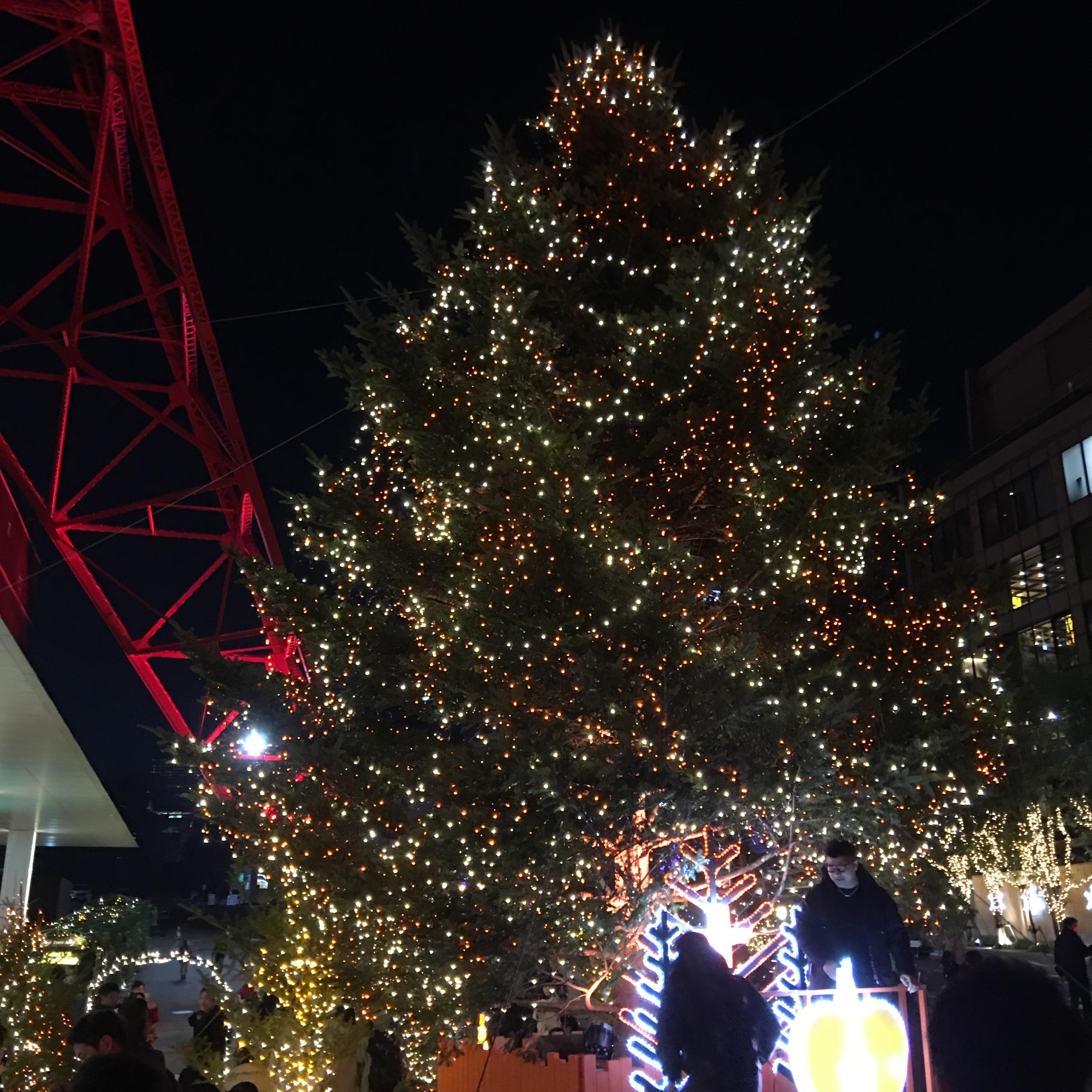 ザ・プリンス パークタワー東京の 陽明殿で忘年会_1_8