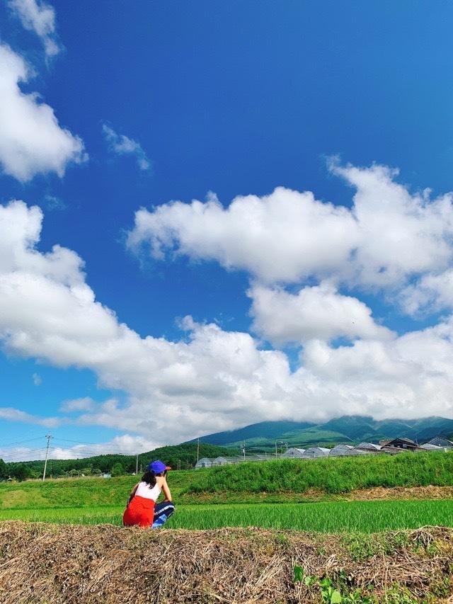 日本を楽しもう!四季の移ろいが教えてくれる真の美しさ_1_2-3