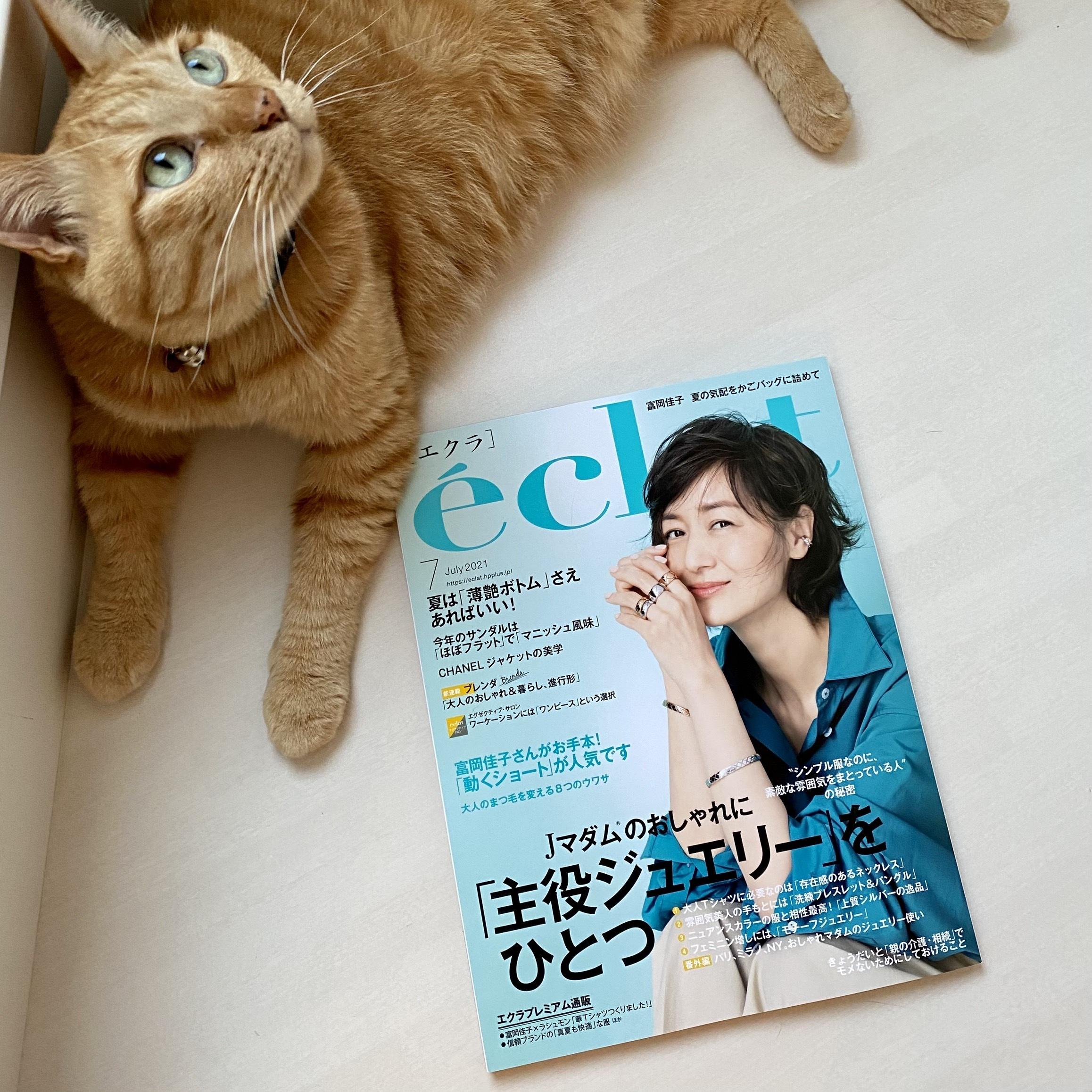 éclat7月号とうちの猫