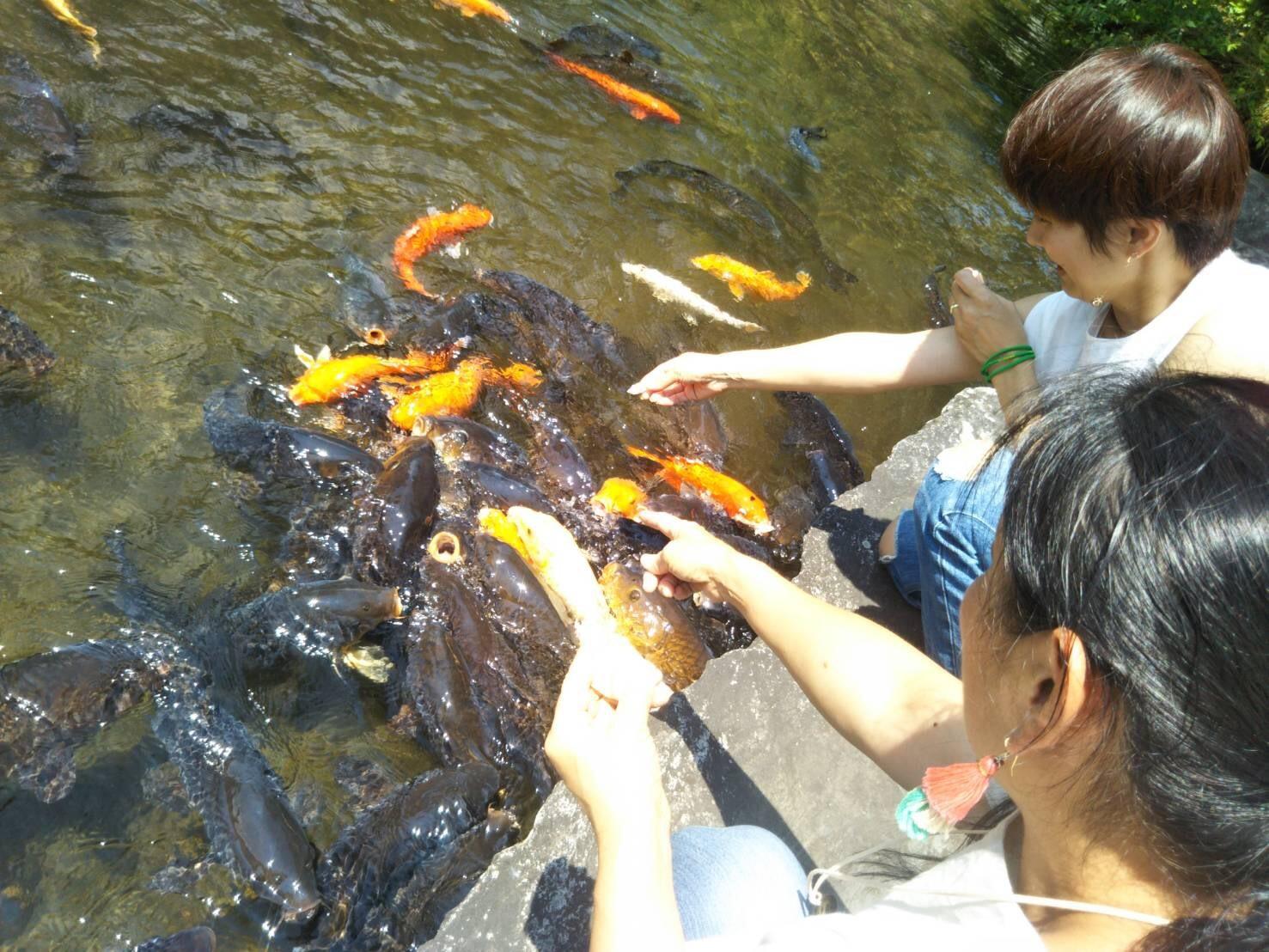 ひと足お先に夏休み 箱根日帰り温泉の旅を楽しんで来ました_1_4-1