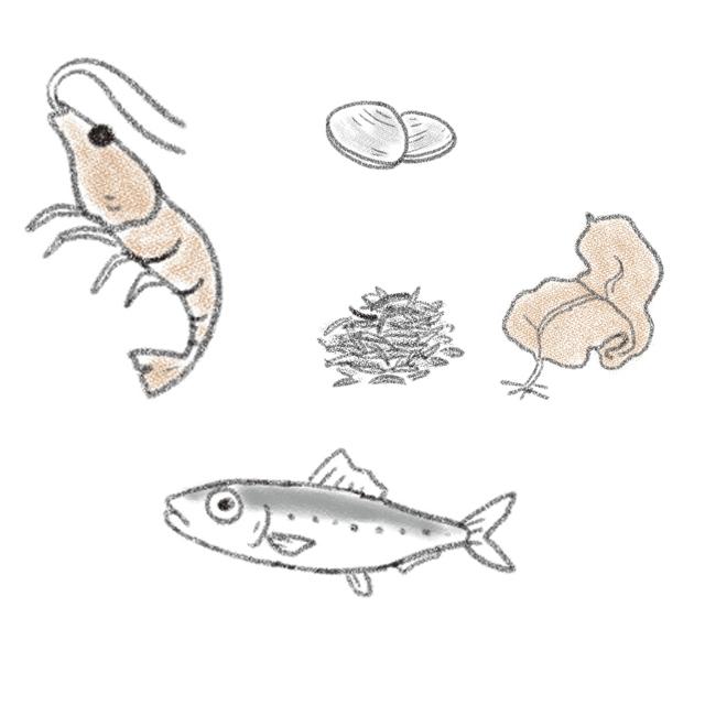 海のもの(海藻類、イワシ、貝、エビなど)