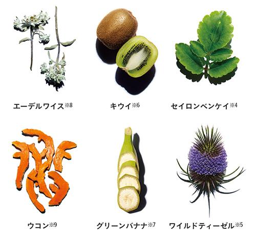 ダブル セーラム EXに配合された植物の代表例