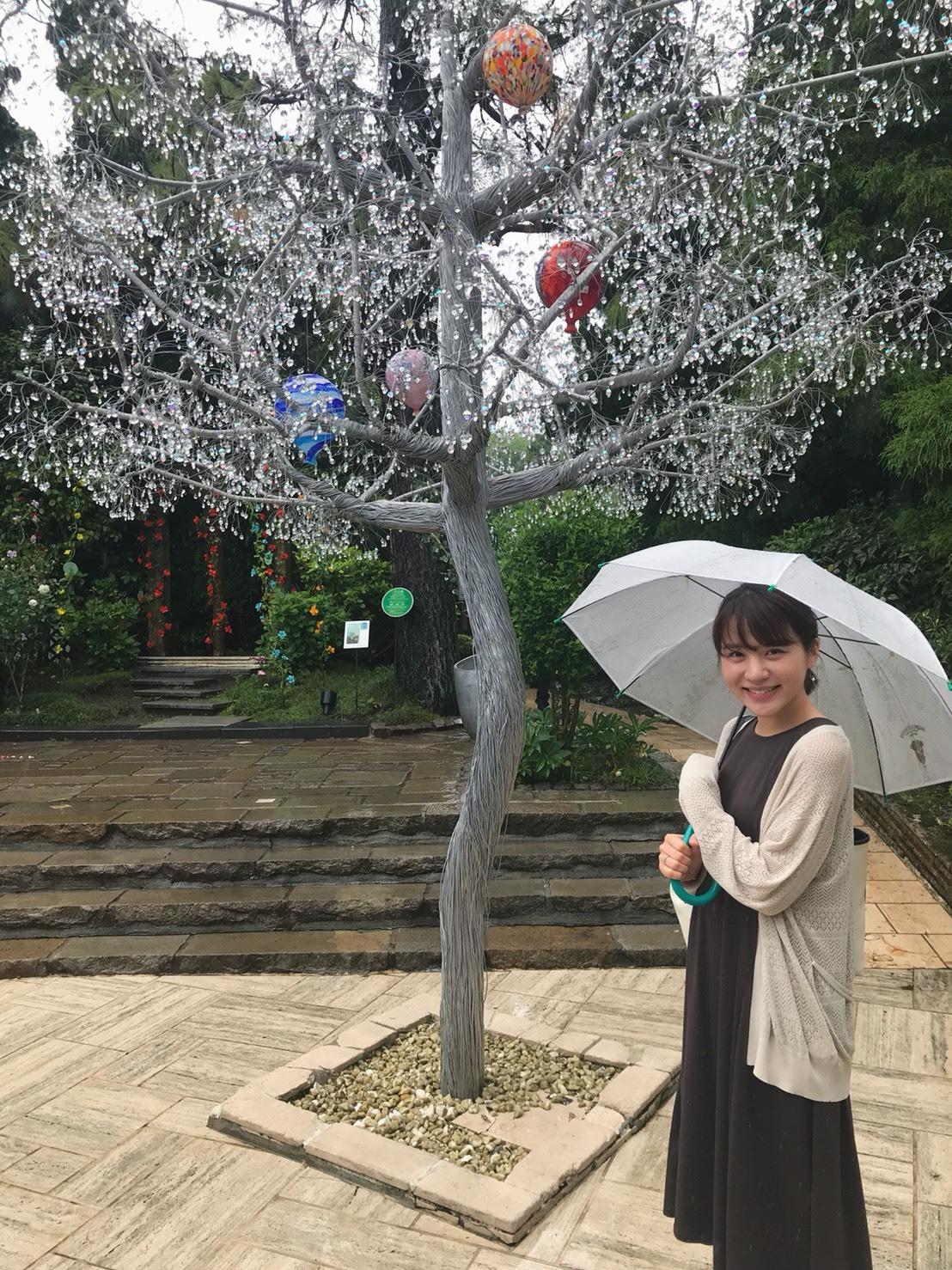 梅雨の箱根は美術館へ_1_3