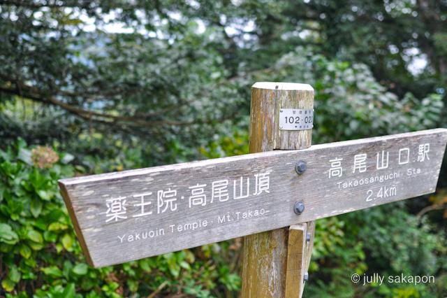 【さかぽんの冒険】苔むす秋の山と温泉プチトリップ❤️@高尾山_1_11