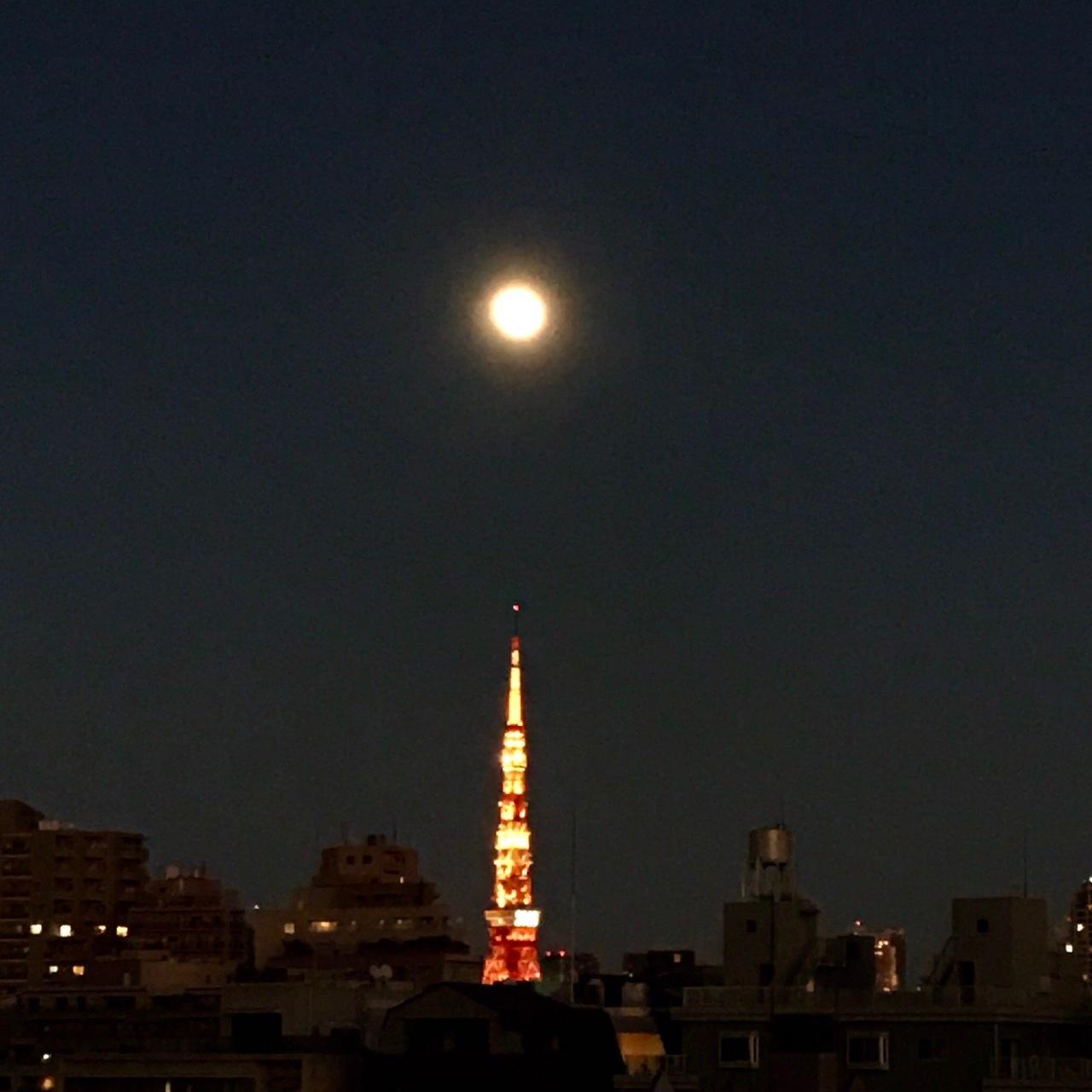 [富岡佳子private life]明けましておめでとうございます!_1_1