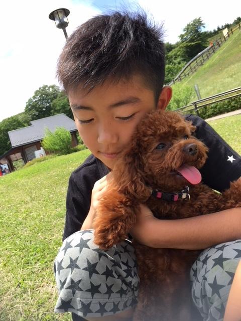 戌年なので我が家のお犬さんとドッグシャンプーをご紹介♪_1_3-3