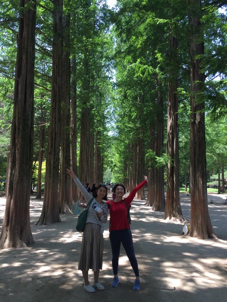 ソウルからプチ旅!並木道のお散歩とダッカルビ_1_3-2