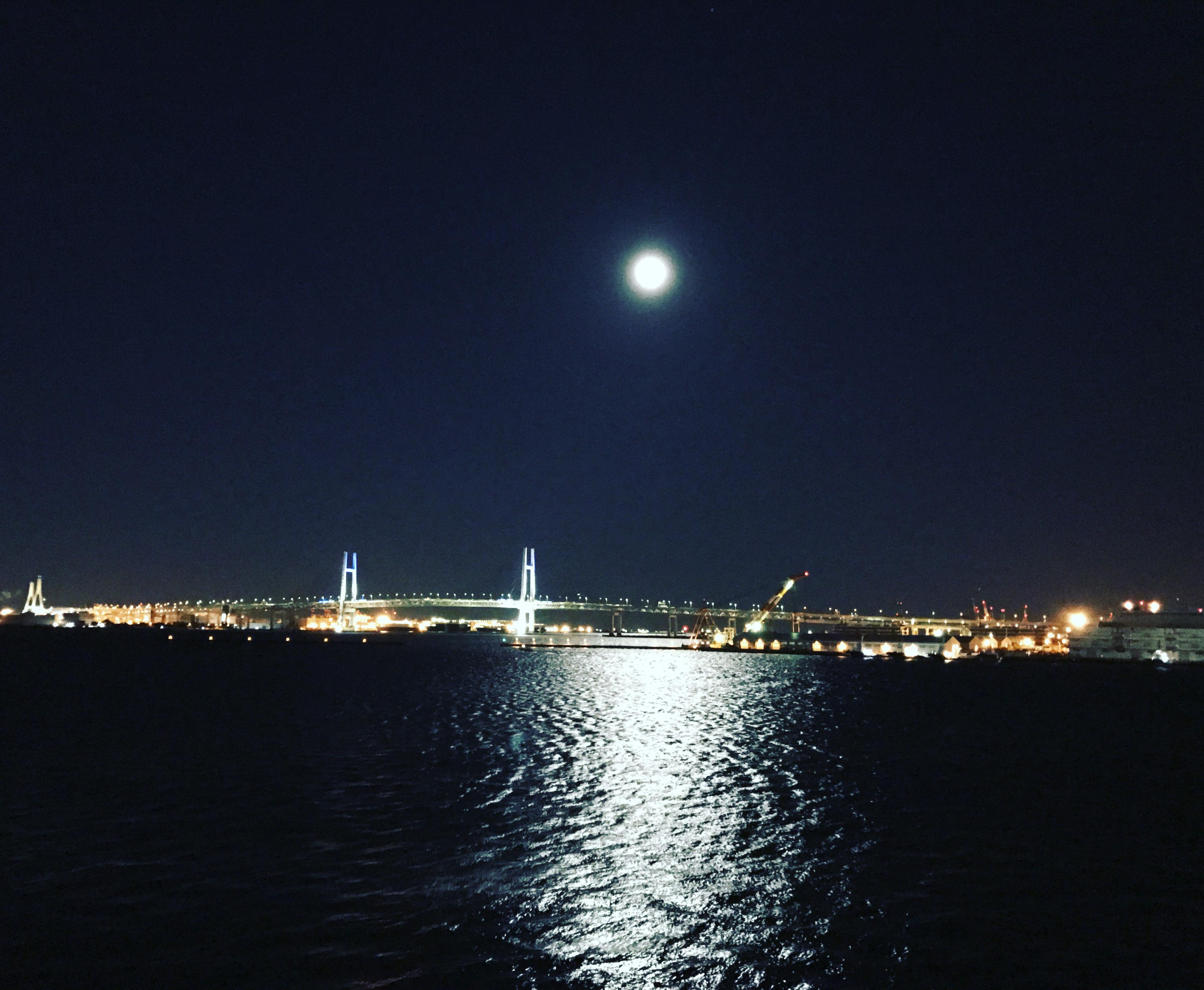 色の力を借りて横浜へ_1_3