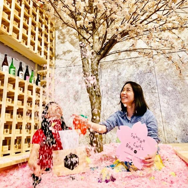 桜 プール 花見 サクラチルバー