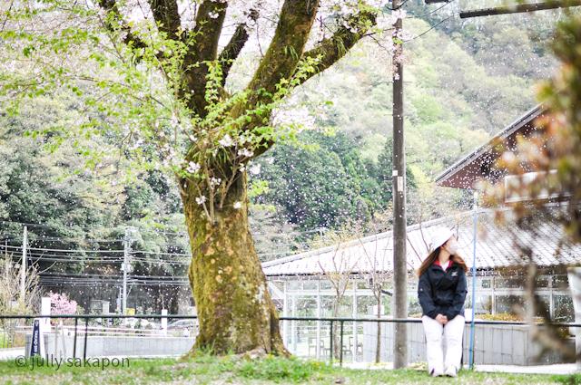【番外編】高尾山 青もみじと温泉の旅2021.4_1_10