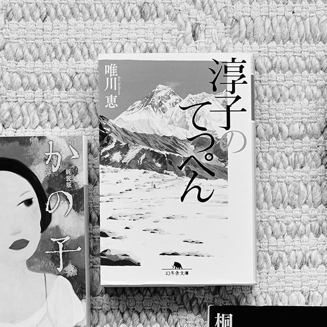 「田部井淳子」の評伝小説
