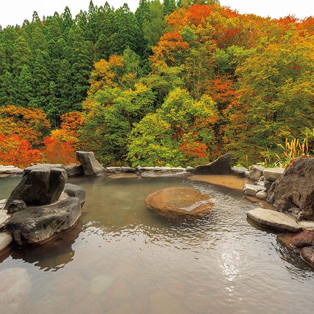 広大な庭園が広がり四季折々の自然美も魅力。