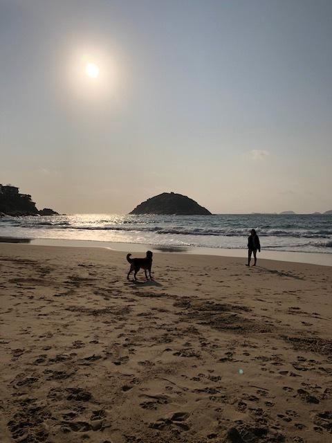 週末はビーチで朝ご飯♪_1_1-4