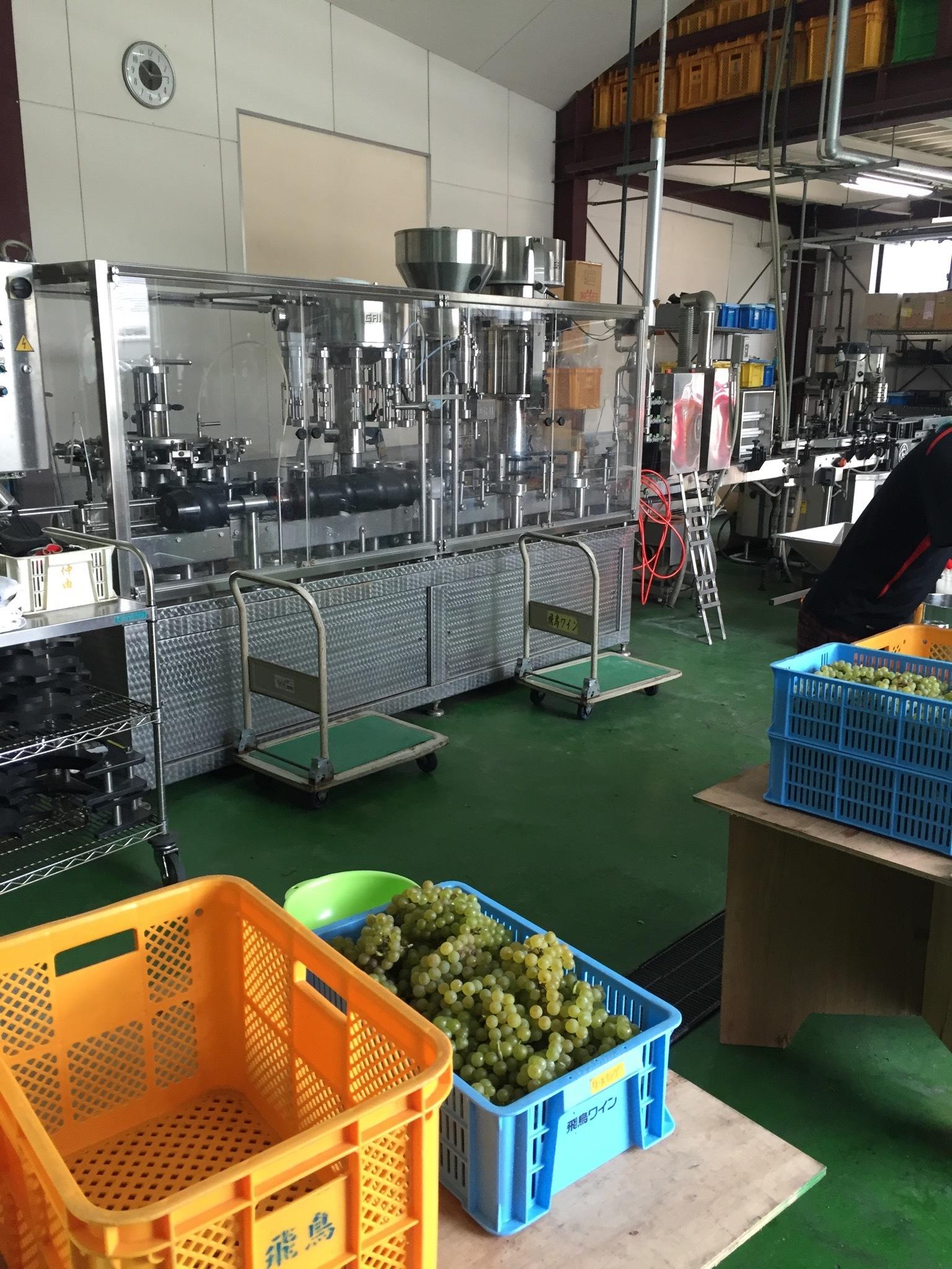 オリジナルワインを造る①_1_6-2