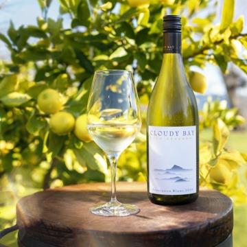 ニュージーランドの自然を感じさせるワイン 「クラウディー ベイ ソーヴィニヨン ブラン 2020」が誕生!/【飲むんだったら、イケてるワイン/WEB特別篇】