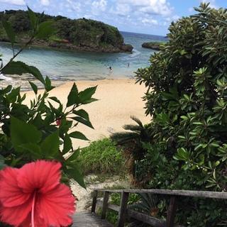 夏終盤は西表島の旅 大自然を満喫!気楽な息子と二人旅①