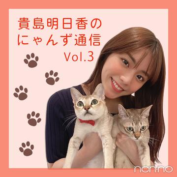 ノンノモデルが愛猫トーク♡ 貴島明日香のにゃんず通信 #03 にゃんずとの1日