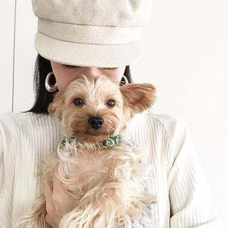 犬を飼うということ【40代 私の暮らし】